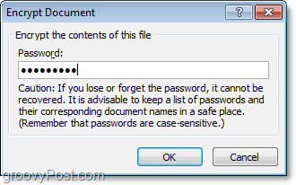 create a password for your office 2010 document