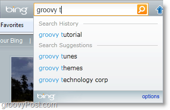 the bing bar search box is big and unchanged, otherwise
