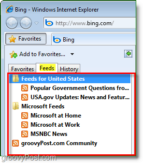 the common feed list located in internet explorer's Favorites bar