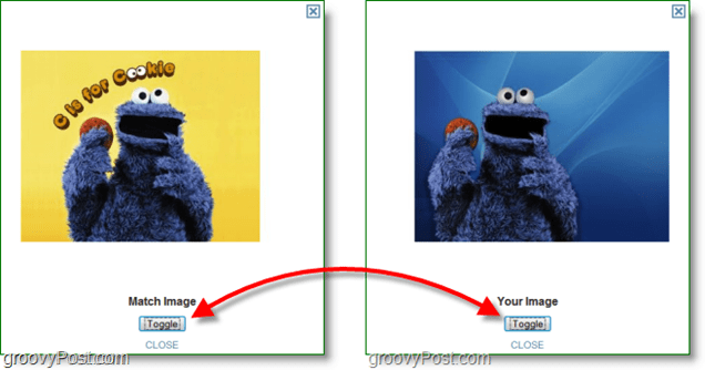TinEye Screenshot -comparing original image and match image