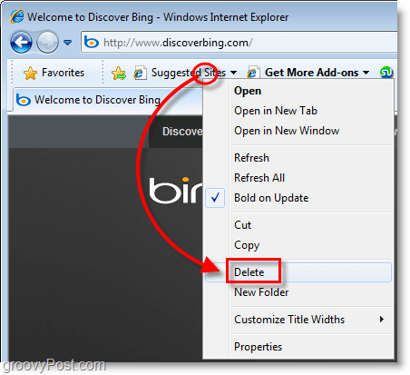 Internet Explorer 8 - delete suggested sites