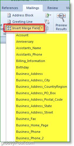 Outlook 2010 screenshot -insert more custom fields, optional though