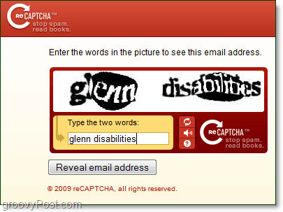 using a captcha service to protect and hide your email address from bots