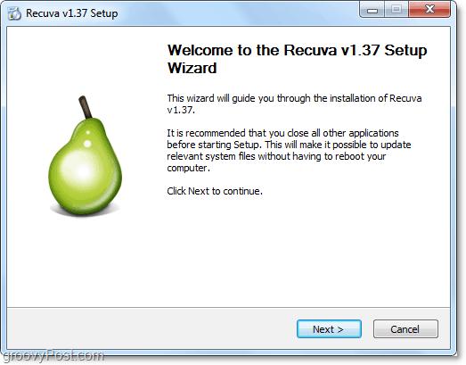 Setup Recuva install wizard