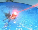 Shark with laser beams attached to it's head in PowerPoint 2010