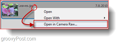 adobe bridge open camera raw
