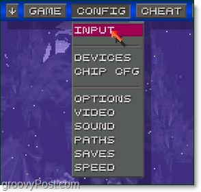 config > input menu