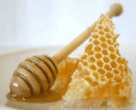Google Honey