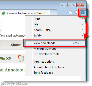 ie9 view downloads