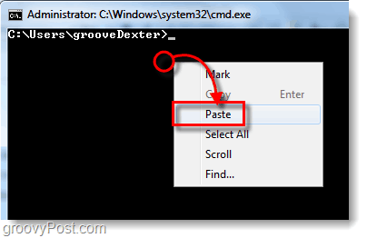 how to paste in the cmd