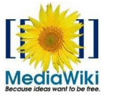 MediaWiki Plugin for Microsoft Word 2010 and 2007