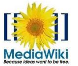 MediaWiki Plugin for Microsoft Word 2010 and 2007