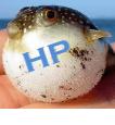 HP bloatware slows down your computer, lets fix it