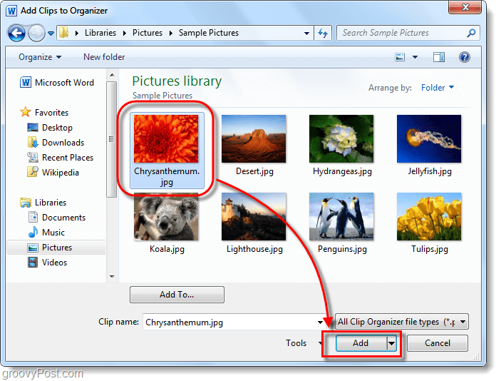 choose picture word 2010