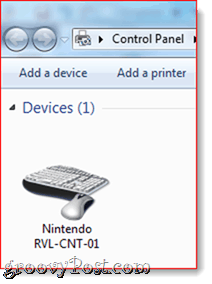 Nintendo RVL-CNT-01