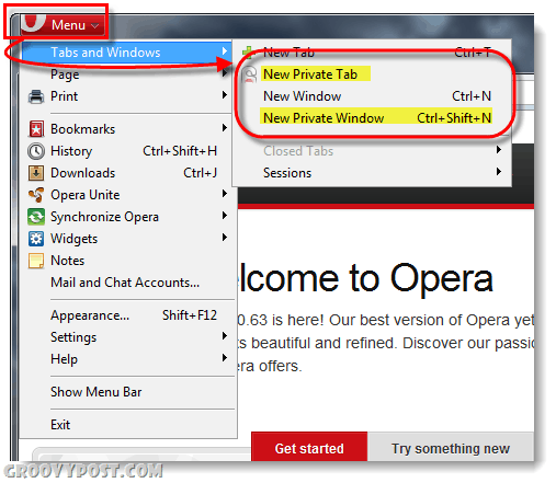 Opera private browsing