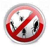 Install Anti-virus to squash bugs and nasy virus code!