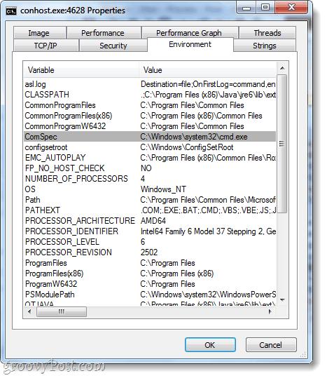 conhost environment tab cmd.exe