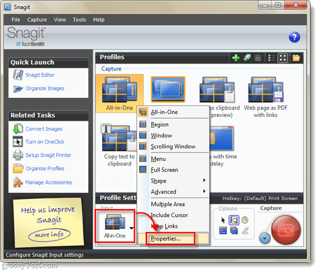 profile input properties from snagit 10