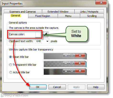 the canvas color default in snagit 10