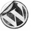 Wordpress Tips and Trips