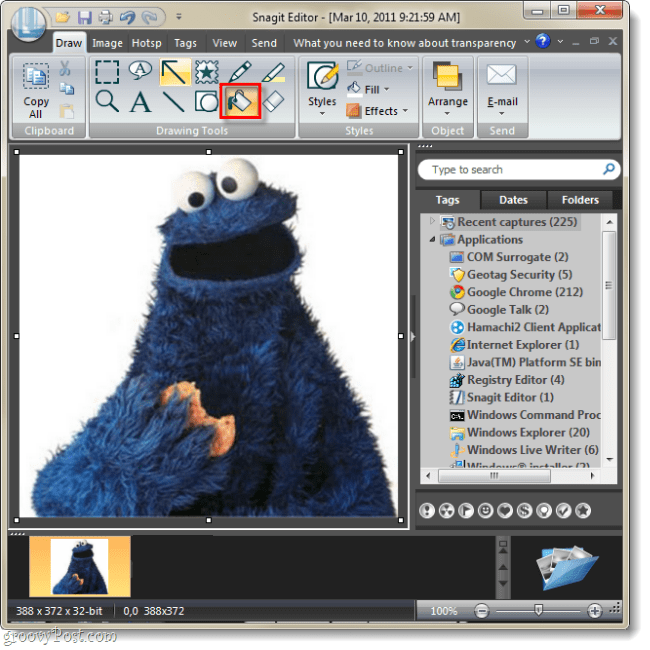 capture image in snagit, select fill tool