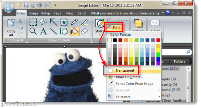 set fill color to transparent in snagit 10