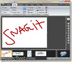 Snagit image editor