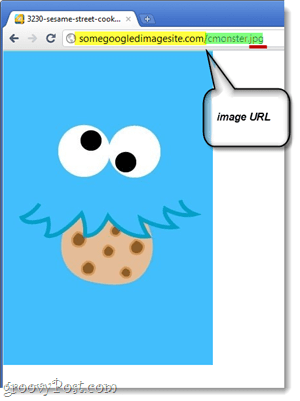 copy the image url
