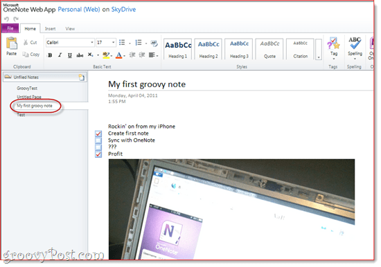 OneNote Skydrive Office Live IPHone