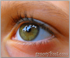 Adobe Photoshop Basics - Human Eye select reflection