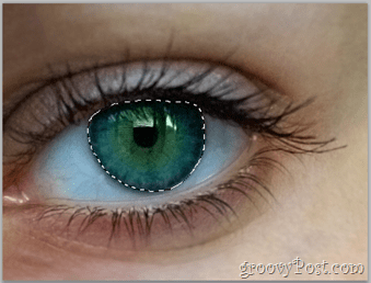 Adobe Photoshop Basics - Human Eye select eye layer