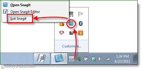 completely shut down snagit editor and snagit
