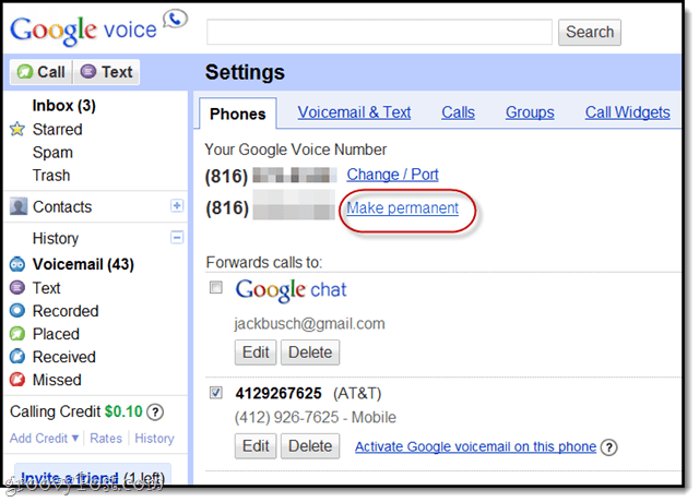 retain your old google voice number after porting