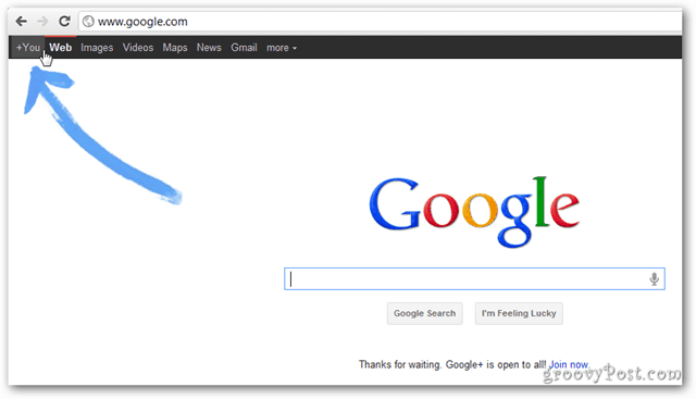 Google home page Google+ public