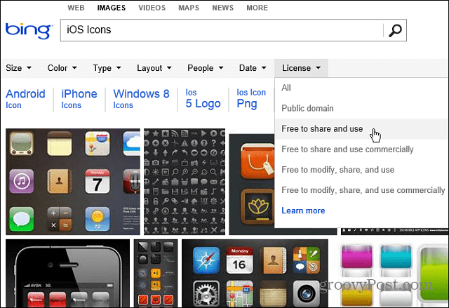 Bing License Search