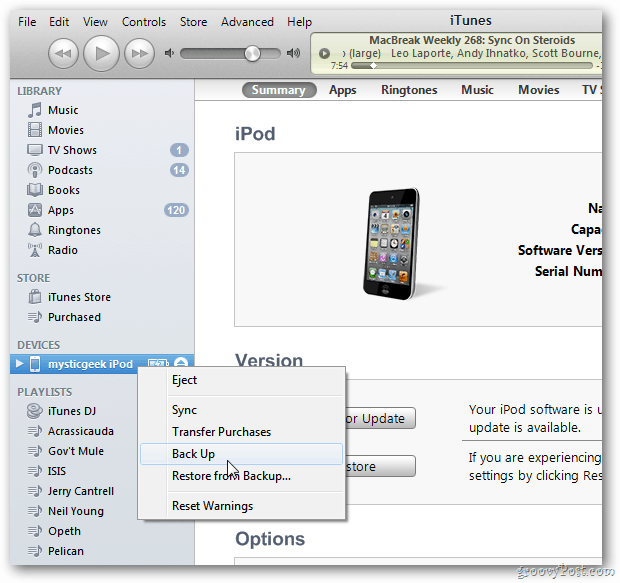 Device in iTunes