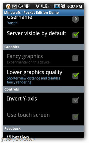 minecraft pocket settings and options