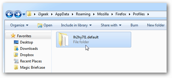 Mozilla Profile Folder