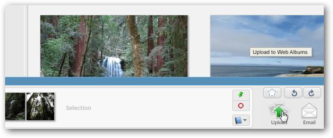Picasa Upload Button