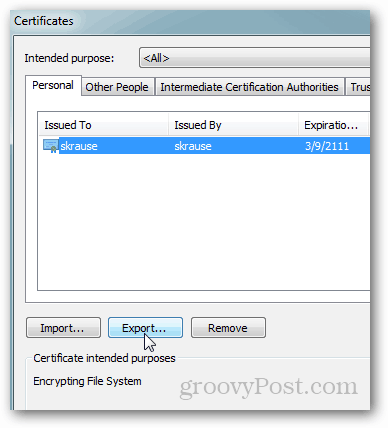 IE9 - Export EFS Certificate
