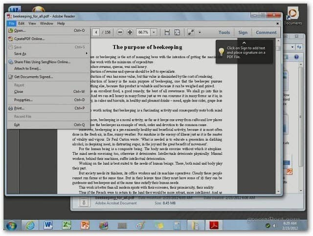 open PDF Adobe Reader