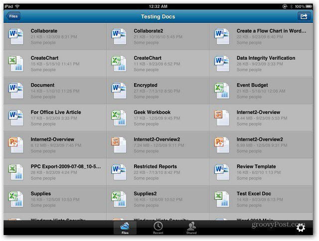 SkyDrive iPad