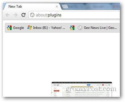 PDf Viewer Chrome 1