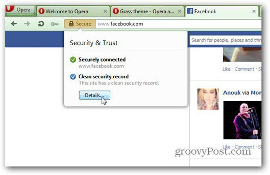 opera 12 security
