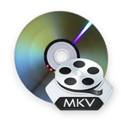 dvd to mkv video rip handbrake