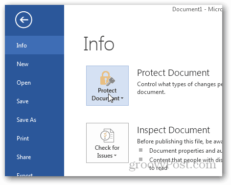 Password Protect and Encrypt Office 2013 Documents : Click Protect Document