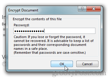 Password Protect and Encrypt Office 2013 Documents : Type a Password