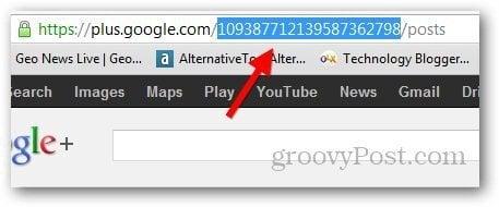Google Plus Short URL 1