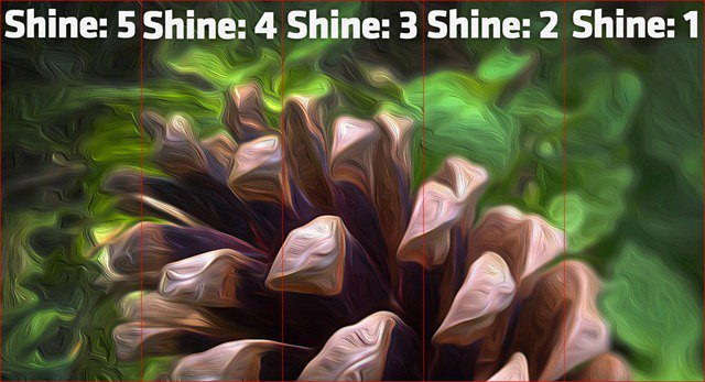 Shine Levels Comparison Oil Paint Filter Photoshop CS6